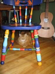 Happy Cat Chair