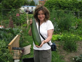 Zoom and the Really Big Zucchini