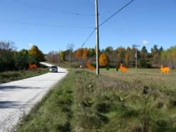 Rural Road Art