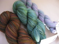 Three skeins of yarn from Wandering Cat Studios
