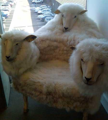 sheepchair
