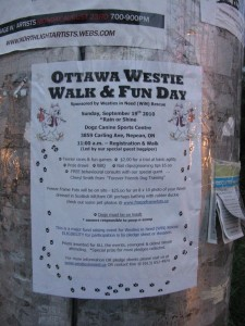Westie Walk